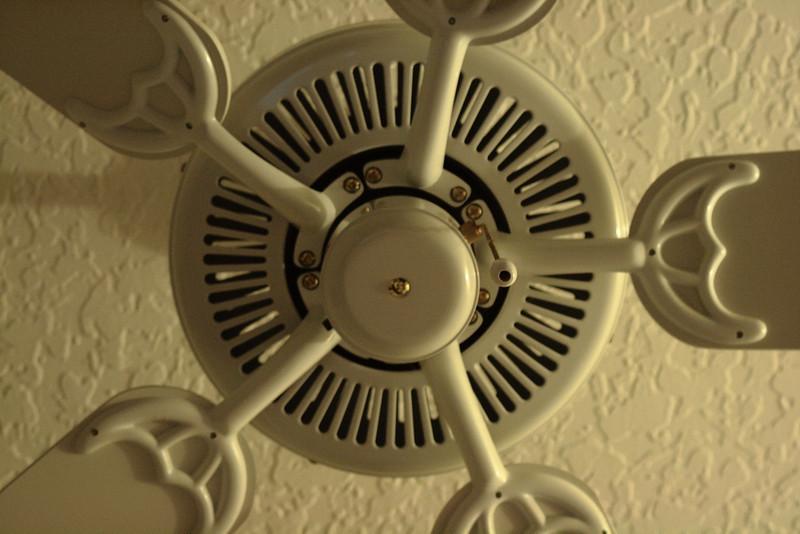 Mar. 1, 2010: Just a Ceiling Fan.