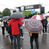 PETE BANNAN-DIGITAL FIRST MEDIA Spectators sport umbrellas at the Haverford Spring Music Festival on Sunday May 1 on Brookline Blvd. in Havertown. The rain or shine event  featured six bands including The Verve Pipe and Chico's Vibe.