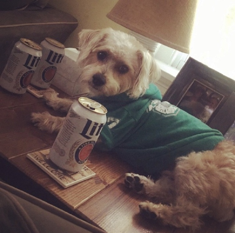 . Murphy... Underdogs on top & thirsty for more #flyeaglesfly