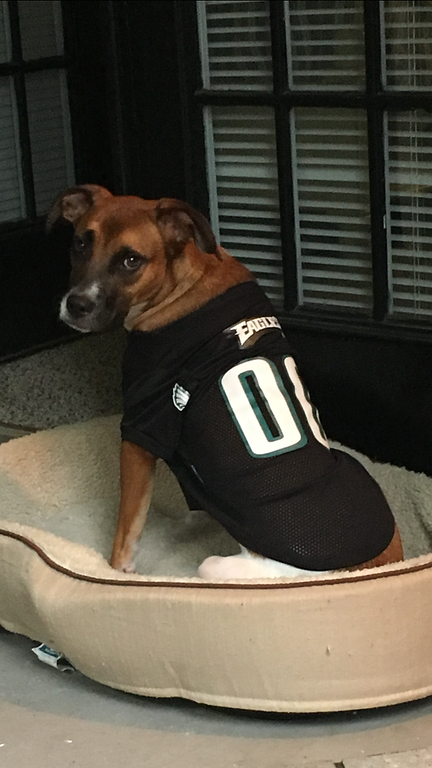 . Dawkins is ready for the super bowl!