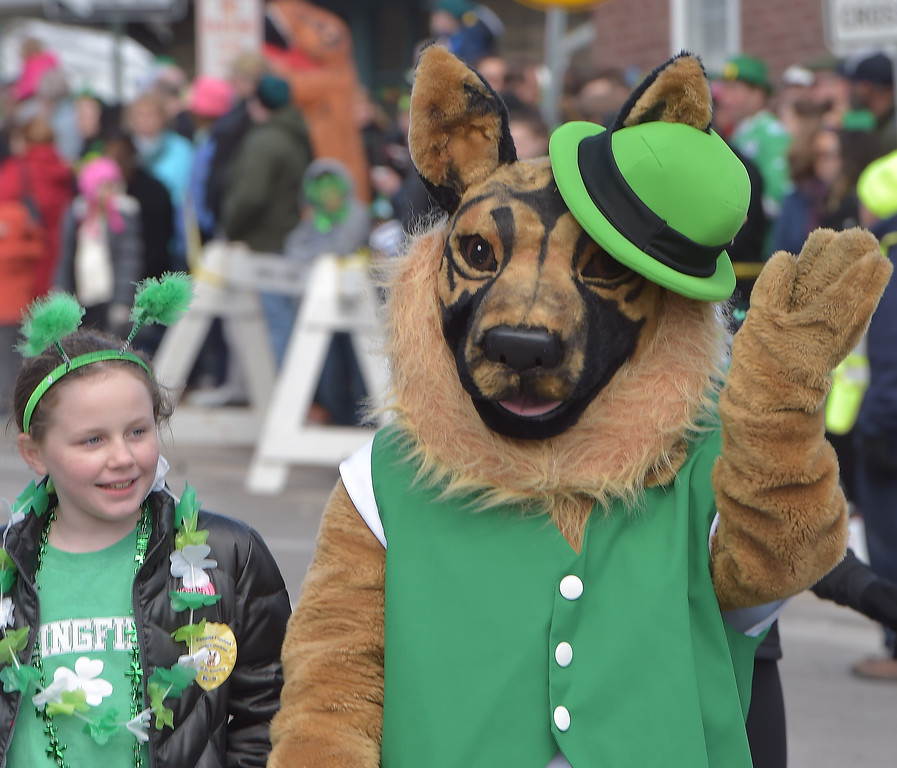 . PETE  BANNAN-DIGITAL FIRST MEDIA      It must be  an Irish Setter at Springfield\'s St. Patrick Day Saturday.