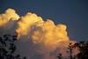 October 22, 2013 Storm Clouds