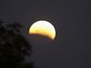 October 8, 2014  Blood moon thru hazy clouds at 7:10 am