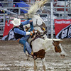 Ross Cooper, from College Station, TX, braces himself for a landing on the mud during the bareback bronc riding event at the Rodeo De Santa Fe on June 25, 2010.                Luis Sanchez Saturno/ The New Mexican.