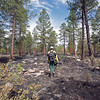 Bill Armstrong, fuels specialist program manager with the Santa Fe National Forest, walks through a section of forest burned in the South Fork fire on June 22, 2010.                Luis Sanchez Saturno/ The New Mexican.