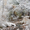 Snow greeted residents in Santa Fe, N.M. on Oct. 28, 2009.<br /> Natalie GuillŽn/The New Mexican