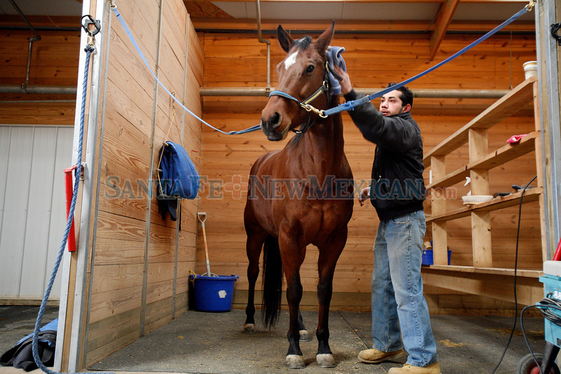 Benjamin Esquivas, supervisor of the stables at Las Campanas in Santa Fe, N.M. on Dec. 9, 2009. <br />  Natalie Guillen/The New Mexican