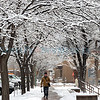 Winter scene from near the Santa Fe Plaza.<br /> Clyde Mueller/The New Mexican