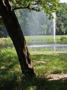 2004-08-05_01966