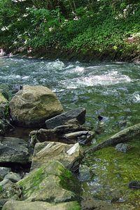 2005-05-28_05015 Hier kann mans gut aushalten bei solchen Temperaturen