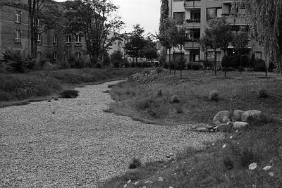 2005-07-19_05640 ausgetrockneter Stadtteich