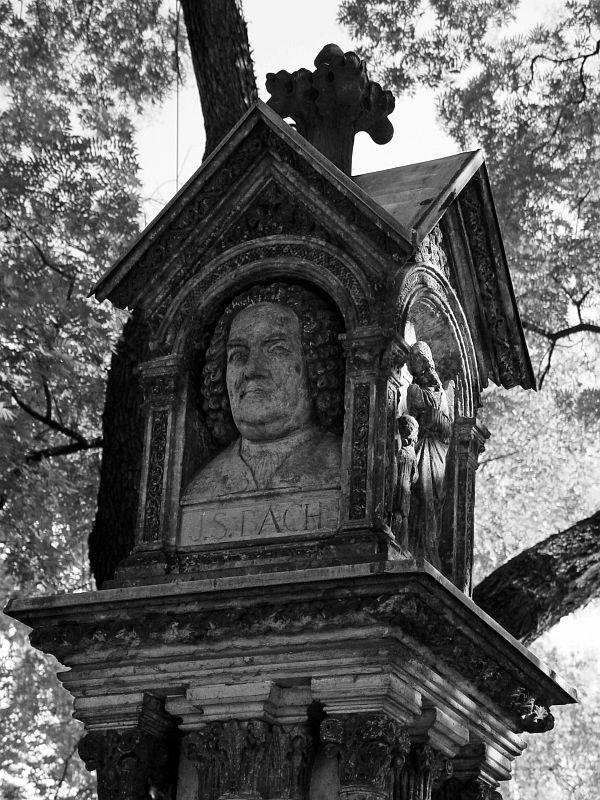 2005-08-29_06131 Johann Sebastian Bach aus dem Winterschlaf erwacht ( --> Bild vom November 2004)