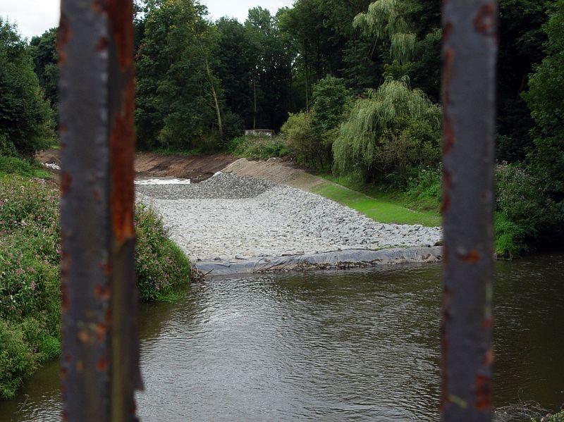 2005-08-26_06112 ein weiterer Versuch die Natur in einen rostigen Käfig zu zwängen