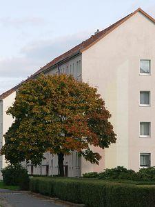 2005-10-16_06848 ein weiterer toller Herbsttag - nun auch mit ersten Wolken nach diesen langweiligen wolkenlosen Tagen :)another nice autumn day in Leipzig - even with some clouds after these boring days without any :)