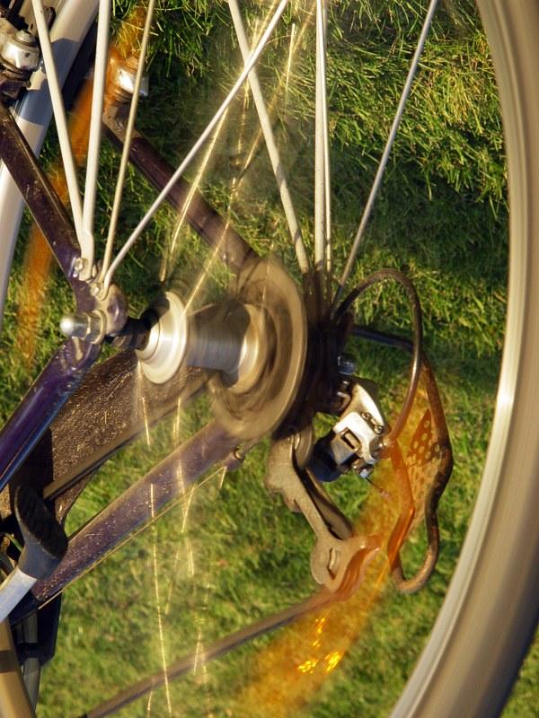 2005-10-30_06973 Hals über Kopf über die WieseHead over heels across the lawn