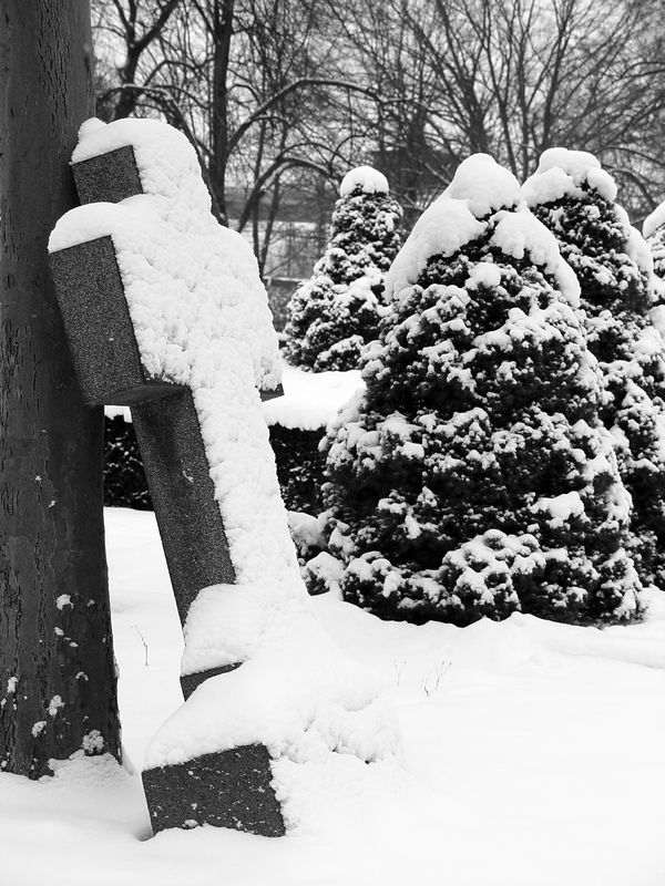 2005-12-29_07907 Neuschnee auf dem Friedhof fresh-fallen snow on the cementary