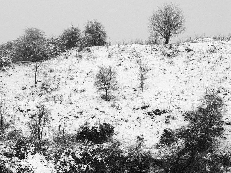 2006-02-10_08580<span class=ger> Da ich sowas noch nicht hatte und schon garnicht im Winter, gibts heute mal eine Winterhügellandschaft. Möchte nicht jemand die 614 anderen Tagesbilder durchschauen, um zu überprüfen ob ich wirklich recht habe? :D</span><span class=eng> As I haven't had this before especially not in winter you'll get a winter hill landscape today. Who's going to check the other 614 daily photos to prove me wrong? :D</span>
