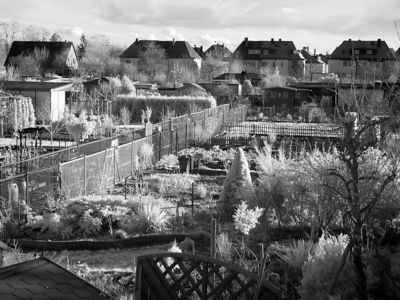 2006-02-18_08707 infrarote Schrebergärten infrared allotments