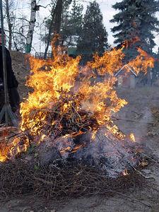 2006-03-04_08859 Zweigverbrennung - Mutti heizt dem Holzunrat ordentlich ein. Branch burning - Mom takes care of the branch garbage.