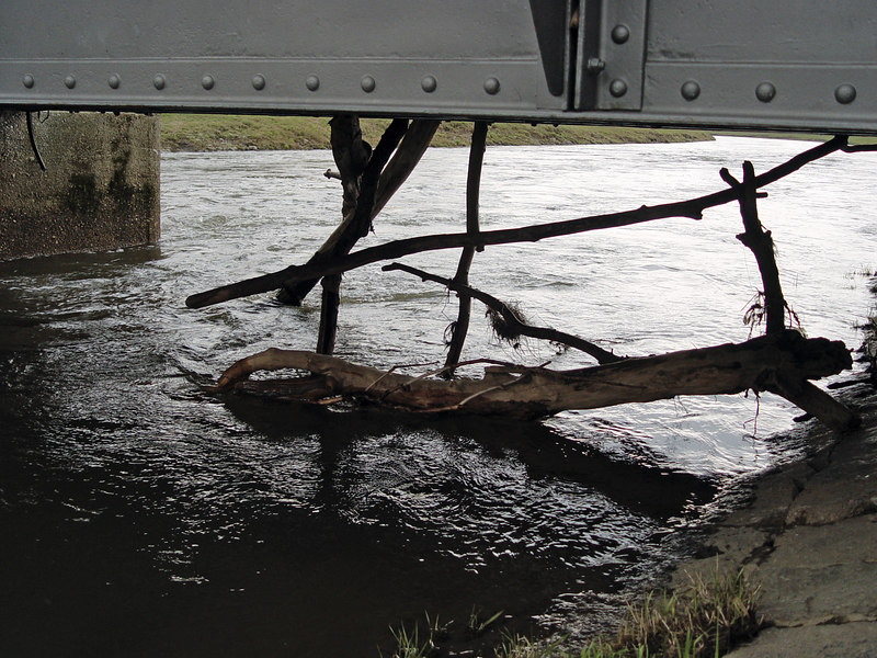 2006-04-14_09420 Treibholz Driftwood