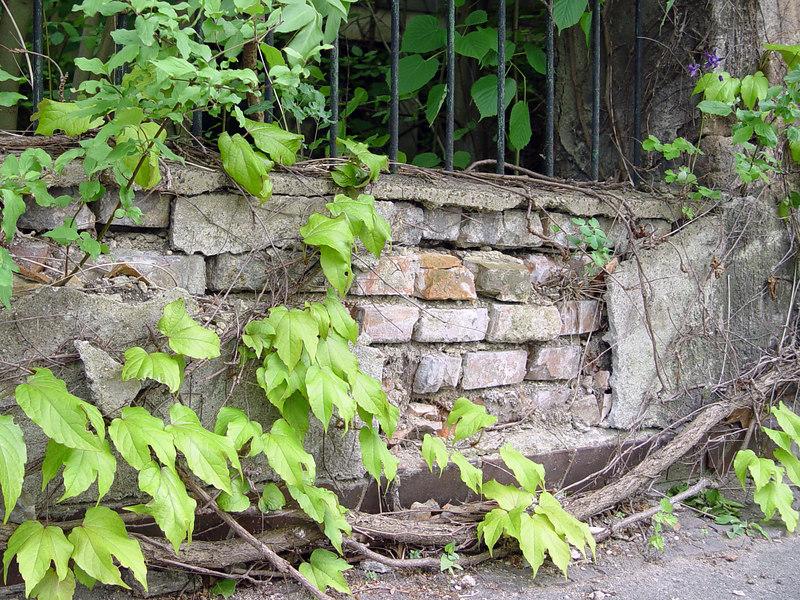 2006-05-21_09802 scruffy fence foundation marodes Zaunfundament fundamento corrompido de un cercado