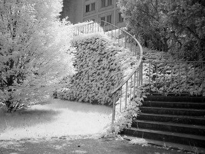2006-05-22_09808 stairway to the opera house Treppe zum Opernhaus la escalera a la ópera