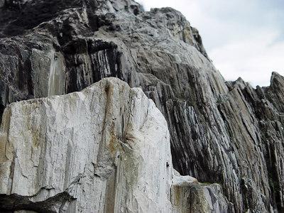2006-06-07_09990 closeup on a 35 million years old silicified tree stump Nahaufnahme eines 35 Millionen Jahre alten verkieselten Baumstumpfes primer plano de un tócon silícicado que tiene 35 millones años