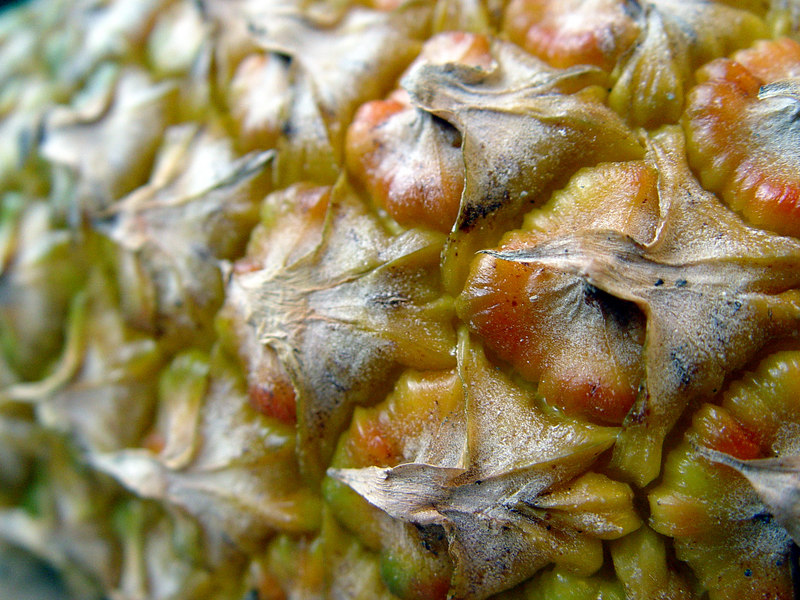 2006-08-31_11098 pineapple patterns Ananasmuster dibujo de piña