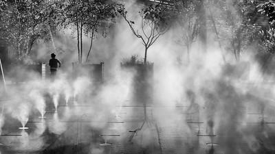Escape the Mist  -  Fuir la Brume  Px