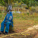 Scarecrow - La Rochelle