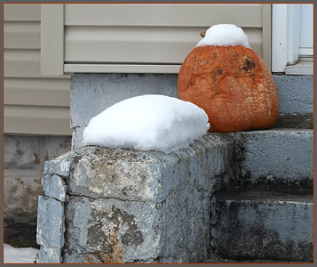 TRICK OR TREAT,    ,ERRRR,,,   WHERE ARE MY BOOTS???   MORE SNOW TODAY!!   12/2/18
