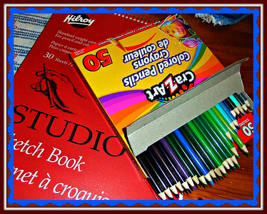 I'm so encouraged with all your comments on my art work. New pencils ,,,but not good ones ,,colors are too dull. I buy loose pencils at second hand stores to test the quality . Some sets are 50 dollars AT MICHAELS and not what I like.,,,so PRANG, LAURENTIEN,STAEDTLER, AND CRAYOLA ARE FINE . PRISMACOLOR ARE SUPPOSED TO BE GOOD.  I DIDN'T KNOW I COULD DRAW TILL I RETIRED.  LOL  21/01/17
