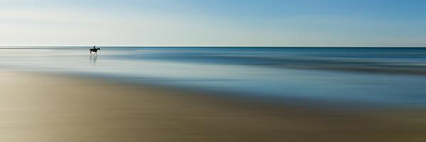 Horse on Beach (2) - Ile de Ré