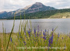A view of Sugarloaf Mt. from Teal Campground in southern Colorado; the lake is Williams Reservoir; best viewed in the largest sizes; the flowers are penstemon<br /> <br /> Thanks for your comments on my shot of the glass Michelin Man.  Hope your weekend is going well.  I'm posting quite early because we are going to ride the cog railway to Pike's Peak today.