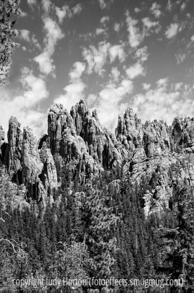 9/10/12 - Needles Highway, Custer State Park, South Dakota; best viewed in the largest sizes<br /> <br /> Just wanted to let everyone know that Dennis Warren's wife sent me an e-mail that Dennis' heart catheterization procedure this morning went well; they put in two stents and Dennis expects to be home in a couple of days.<br /> <br /> Thanks you, everyone, for making my shot of the horses in b/w the #1 shot for the day!  Really made my day!  Based on input from you folks who know much more about horses than I do, I think the horses were probably healthy and just had fly bites.  <br /> <br /> Constructive criticism is always welcome!  Have a great day!