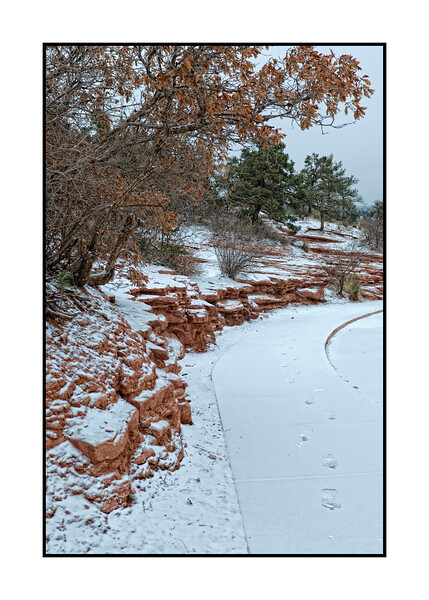 Shot in the Garden of the Gods in Colorado Springs during a very light snowfall - this does not show any of the dramatic rock formations in the park, but I liked the curve of the red rocks and the way the tree arched over the scene.  I think it should be viewed in the larger sizes.  Hope you all like it.<br /> <br /> Thanks for the nice comments on my PF Chang horse.  It did snow here today and yesterday but we've only gotten a couple of inches.  At least we don't have to shovel the driveway.  Hope you have a good day!