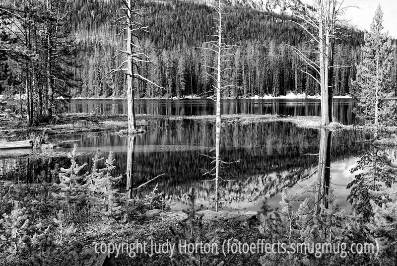Reflections in Sylvan Lake in eastern Yellowstone National Park in Wyoming; best viewed in the largest sizes<br /> <br /> I certainly appreciated all the comments on my drive-by shot of the horse grazing.  And I thoroughly enjoyed all your shots.  So much talent in one place!  Enjoy your day!