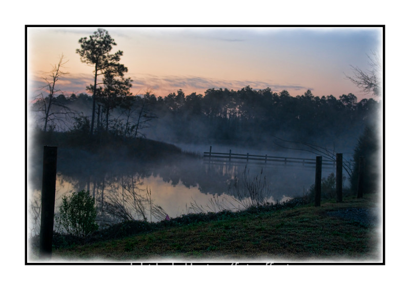 A foggy swamp just before sunrise near Pensacola, Florida.