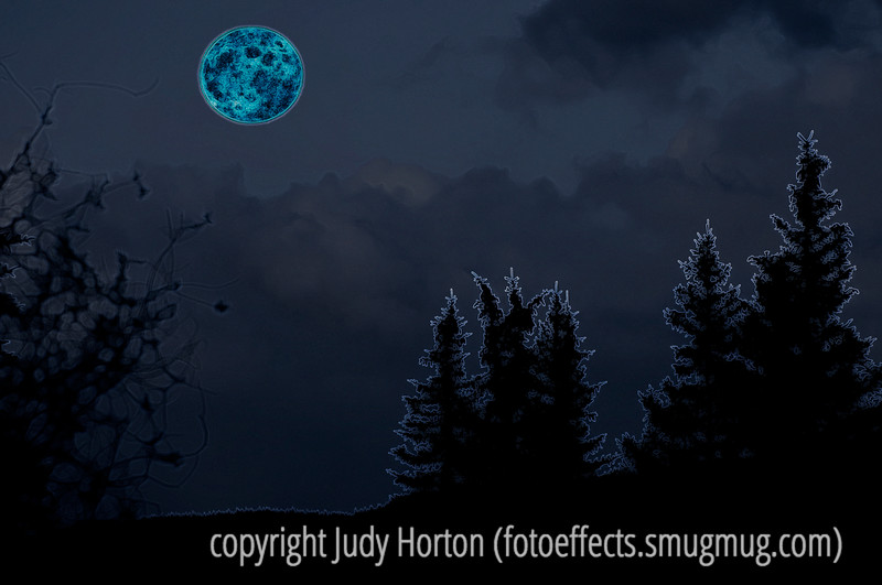 """Neon Moon"" - sung by Garth Brooks.  This is yet another of the images that I created as a possible entry in the Dgrin Challenge.  It is made up of two separate images.  The moon was shot separately and cut out and moved into the image of the trees and clouds at night.  Then I added effects in Photoshop to make the moon look ""neon"" as well as the rest of the scene.  I sure appreciated all the comments on the redone boy in the bubble shot.  The SmugMug community is so supportive and encouraging.  I'm still waffling about what image to enter, but would be glad to hear what you think of this one.  Thanks a bunch, everyone!  And have a good day!  Take care of yourself and your loved ones. whether they be human or otherwise."