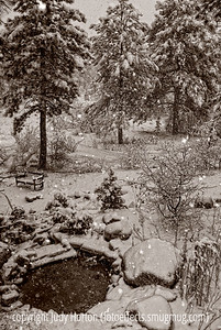 A view of our recent snowstorm from an upstairs window.    The reunion is over.  Our dinner party was a lot of fun, but I'm pretty wiped out.  Tomorrow, though, I'll be back to my regular routine and I hope to catch up on everyone's photos.  Have a good beginning to the week.