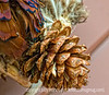 "Closeup of feathers and pine cone; better viewed in the larger sizes.<br /> <br /> There were two correct answers to the saying represented by the following:  Eschew the implement of correction and vitiate the scion OR ""Spare the rod and spoil the child.""  Joda and either Patti or Dan got the correct answer.<br /> <br /> Here's another for those of you who enjoy these challenges:  ""Eleemosynary deeds have their incipience intramurally.""<br /> <br /> Thanks for all the comments on my shot of the fountain at night.  I finally finished processing the wedding pics today.  Now I just have to upload them to smugmug and cut DVDs for the clients.  Today is hump day and we are halfway to the weekend.  Our weather this week is finally more springlike and I've taken a chance and planted some annuals in pots outside.  So far, so good."