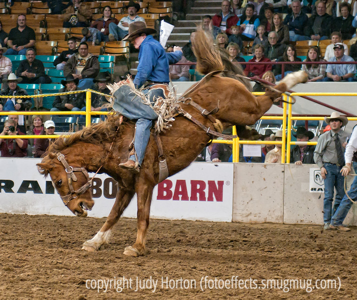 One more rodeo shot - I observed that the bronc riders have two different styles.  The style shown here where the cowboy sits more or less upright on the horse.  In the other style, the cowboy lies back along the horse's back and seems to try to stay that way for the entire eight seconds.  The horses also had their styles.  In the style shown here, the horse kicks its back heels way up into the air; other horses liked to jump straight up into the air with all four feet off the ground at once.  Also, many horses kept bucking for quite a while after the rider was off.  At the end of the eight second ride, two other fellas on horseback would get on either side of the rider on the bronc and the rider would grab onto on of the other men and pull himself off the bucking bronc.  This actually seemed to be quite an intricate maneuver requiring a lot of skill on the part of the other two cowboys and their horses.<br /> <br /> Thanks for the comments on my shot of the floating stairs at the federal building.  I sure appreciate you all taking the time to stop by and check out my photos.  As usual, the week is flying by.  Hope you have a great Thursday!