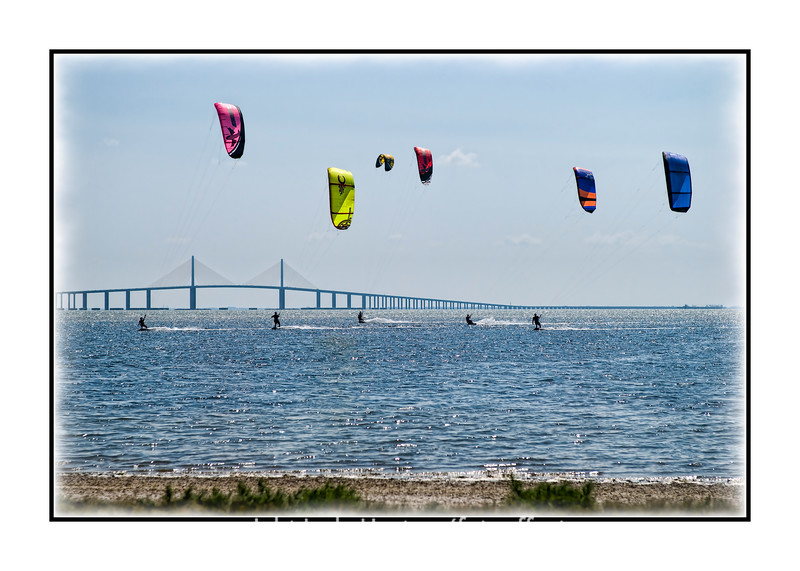 Kite boarders in the bay at St. Petersburg, Florida.  It was a windy spring day and about thirty kite boarders were skimming the water of the bay.  With the bridge in the background, it made a very colorful scene.  View in the largest sizes to see the detail.  Thanks for all the nice comments about Willoughby.  He is a very sweet dog and we love him.  Spring finally seems to be springing in Colorado Springs and we are ready for it!  I'm looking forward to seeing what you talented smugmuggers put up today!  Looking at your photos gives me a lot of pleasure each day and invariably inspires me to try new things.  Thanks to all of you for being my inspiration!