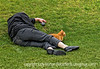 As we were walking into the Heard Museum in Phoenix, there on the lawn asleep was this man with his cat.  I could not get into the best position for a shot without possibly waking him.  It seemed so odd.  At first, I thought he might be homeless, but it is also possible that it was just someone who lived nearby who wanted to take a bit of a nap on the museum lawn.<br /> <br /> I appreciated all the comments on my shot of the California poppies.  Yes, opium does come from poppies but not from California poppies.  It comes from the red ones that look similar to oriental poppies and that are grown widely in the middle east, as well as elsewhere.  Hope you are enjoying your week.  We are supposed to get snow tomorrow or Wednesday.  Spring just can't seem to take hold here.