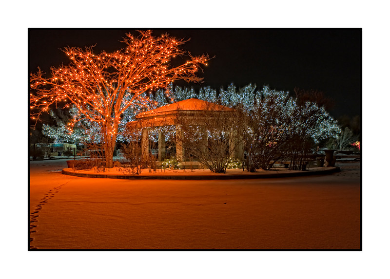 Another shot from the Botanic Garden Light Show last year - best viewed in the largest sizes<br /> <br /> Thanks to those of you who commented on the blue tree at the garden light show.  The week has flown by, as usual, and we are almost to the weekend and I desperately need to come up with an idea for my annual Christmas card.  Time's a'wastin'.  Have a great day!