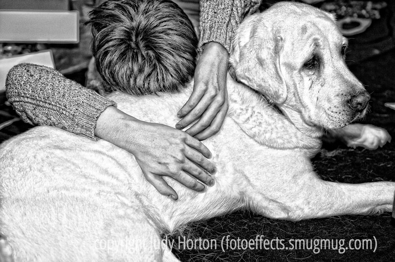 "Rilla makes a great pillow - taken at Christmas when I saw my grandson resting his head on his dog, Rilla.  I especially liked Duncan's hands in this shot.  <br /> <br /> Thanks to those of you who commented on my shot of the snowstorm.  I just found out that I made the finals of the dgrin photojournalism challenge.  I'm sure I won't win because there are so many outstanding shots among the finalists but I'm so pleased just to have made the cut.  My shot was ""Resident Parking, Nursing Home, USA.""<br /> <br /> Anyway, have a terrific day.  Let your loved ones know how much you care.  I keep thinking of all the thousands of people in Haiti who did not have a chance to say goodbye."