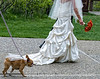 "The bride and one of her attendants.  When we were in the Grand Tetons, we spent some time one afternoon sitting on the patio of the Grand Teton Lodge and a wedding was being held there.  I snapped a few shots of the wedding.  I thought this one was rather cute, as the dog had on a veil and was, clearly, a ""person"" of importance at this wedding.<br /> <br /> Again, I'm overwhelmed by your response to my black and white shot of the lake in eastern Yellowstone.  Thanks so much for all your nice comments.  I don't feel I deserve them, but I admit I do cherish them all.<br /> <br /> The weekend is upon us.  Hope you have plans for taking some nifty photos that I'll get to see later in the week."