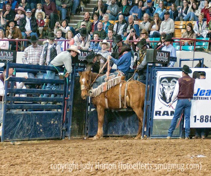 I don't wanna come out and play! - One of the funniest moments at the rodeo was this one, when they opened the gate and the bronc decided not to come out.  He just stood there.  They finally shut the gate and then opened it up a few moments later and he stood there again for quite a while but then decided to commence bucking.  The cowboy got to have another chance with a different horse, since so much of his 8 seconds was taken up with the horse just standing still --- which affected the cowboy's ability to get a high score.  <br /> <br /> Thanks for your warm response to my portrait of the cowboy.  Many of you thought this man had a very interesting face with lots of character and I agree wholeheartedly.  He was a wonderful guy to photograph.  Some people just seem made for the camera, don't they?<br /> <br /> My cold is not quite so miserable, so it looks like I'll live.  My poor hubby has it now.  Hope your week is going better than ours!