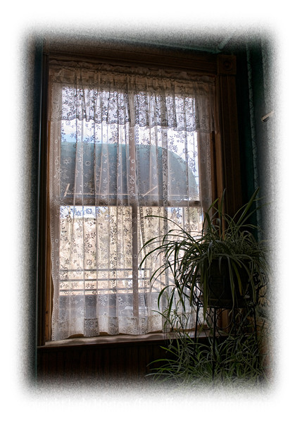 Day 123 - Lace curtains at a window in an old hotel softly light a plant; detail in this image is better viewed in a larger size.  This was taken in Cripple Creek when we went to the Ice Festival last weekend. I'm posting early, as we are leaving early this morning for Estes Park for a couple of days.  I don't know if I'll have wifi at the hotel, so don't know if I'll be able to comment on all your great shots.  At any rate, hope everyone has a really good day!