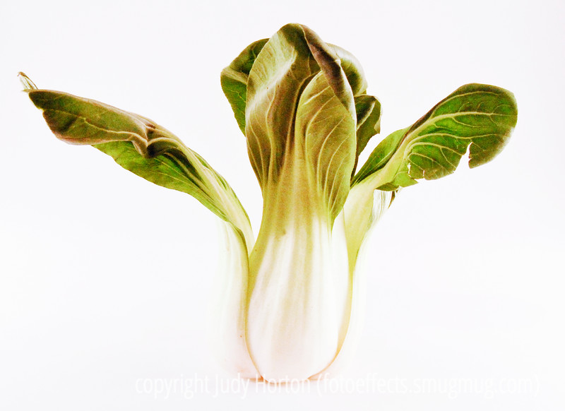 Day 81 - Chinese cabbage shot with a high-key effect.  I'm thinking of entering this one in the current Dgrin challenge.  Do you think it is worthy.  Please critique.
